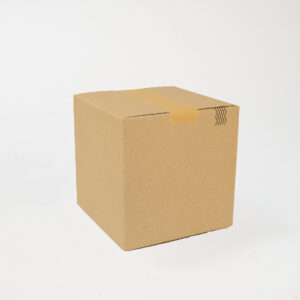 24038_Packed.jpg